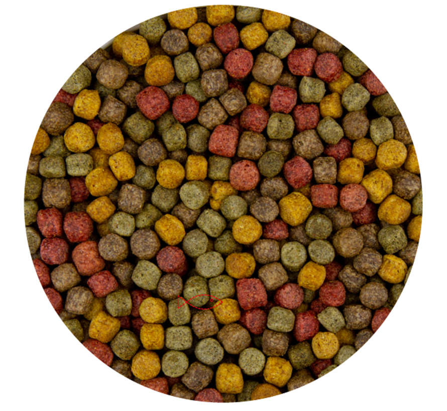 Pond Pro Multi Kwartet Mix 6mm - 10 Kilo